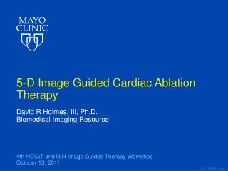 5-D Image Guided Cardiac Ablation Therapy