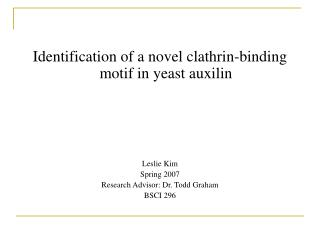 Identification of a novel clathrin-binding  motif in yeast auxilin Leslie Kim Spring 2007