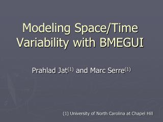 Modeling Space/Time Variability with BMEGUI
