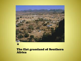 The flat grassland of Southern Africa