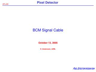 BCM Signal Cable