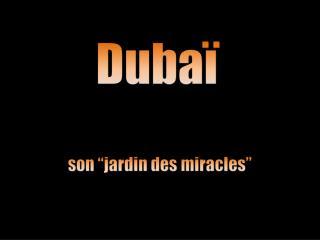 2139 JARDIN DE DUBAI