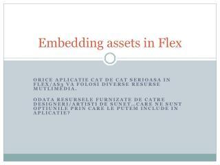 Embedding assets in Flex
