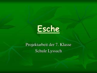 Esche