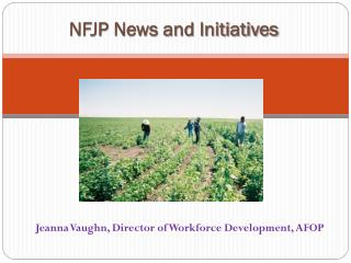 NFJP News and Initiatives