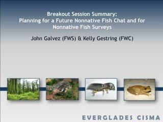 Breakout Session Summary: Planning for a Future Nonnative Fish Chat and for Nonnative Fish Surveys
