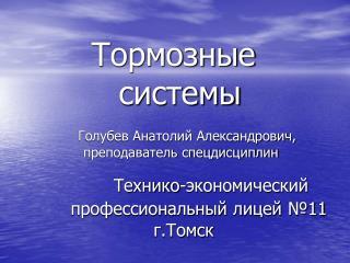 Технико-экономический профессиональный лицей №11 г.Томск