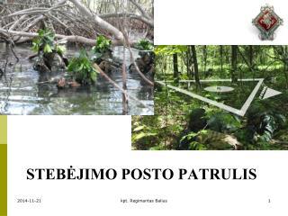 STEBĖJIMO POSTO PATRULIS
