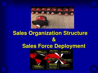 Sales Organization Structure   Sales Force Deployment