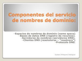 Componentes del servicio de nombres de dominio:
