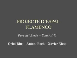 PROJECTE D'ESPAI-FLAMENCO