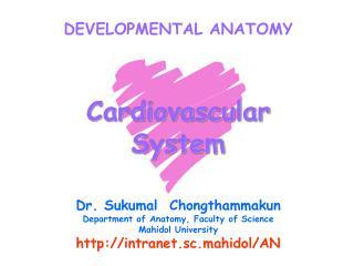DEVELOPMENTAL ANATOMY Cardiovascular System Dr. Sukumal  Chongthammakun