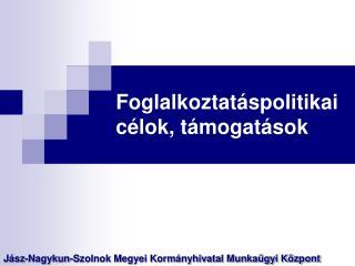 Foglalkoztatáspolitikai célok, támogatások