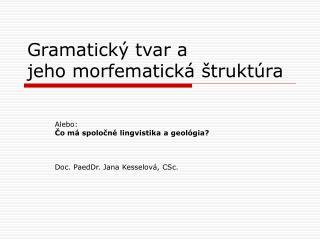 Gramatický tvar a  jeho morfematická štruktúra