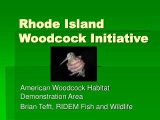 Rhode Island Woodcock Initiative