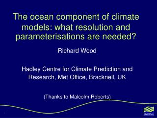 The ocean component of climate models: what resolution and parameterisations are needed?