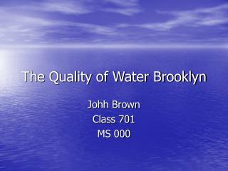 The Quality of Water Brooklyn