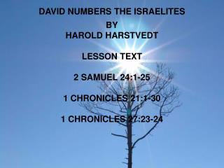 DAVID NUMBERS THE ISRAELITES