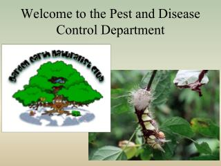 Welcome to the Pest and Disease Control Department