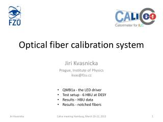 Optical fiber calibration system