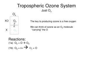 Tropospheric Ozone System Just O x