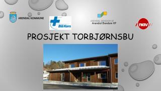 Prosjekt  Torbjørnsbu