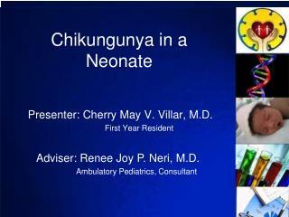 Chikungunya in a Neonate
