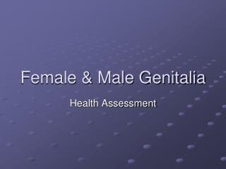 Female & Male Genitalia
