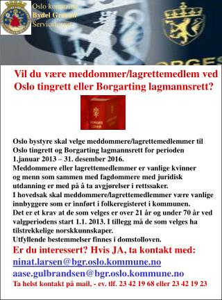 Vil du være meddommer/lagrettemedlem ved Oslo tingrett eller Borgarting lagmannsrett?