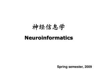 神经信息学 Neuroinformatics
