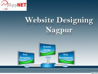 Website Designing Nagpur