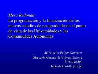 Mª Ángeles Pulgar Gutiérrez Dirección General de Universidades e Investigación