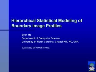 Hierarchical Statistical Modeling of Boundary Image Profiles