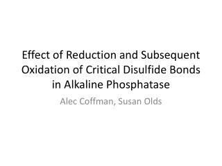 Effect of Reduction and Subsequent Oxidation of Critical Disulfide Bonds in Alkaline  Phosphatase