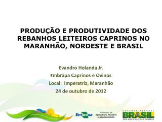 PRODUÇÃO E PRODUTIVIDADE DOS REBANHOS LEITEIROS CAPRINOS NO MARANHÃO, NORDESTE E BRASIL