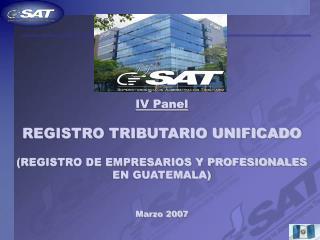 IV Panel   REGISTRO TRIBUTARIO UNIFICADO  REGISTRO DE EMPRESARIOS Y PROFESIONALES EN GUATEMALA   Marzo 2007