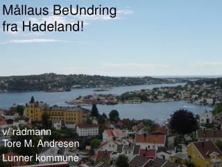 Mållaus BeUndring  fra Hadeland!