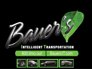About Bauer's