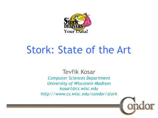 Stork: State of the Art