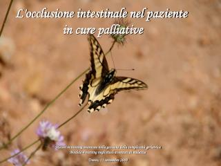 L'occlusione intestinale nel paziente  in cure palliative