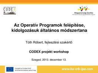 Tóth Róbert, fejlesztési szakértő CODEX projekt workshop Szeged, 2013. december 13.