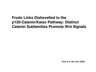 Frodo Links Dishevelled to the p120-Catenin/Kaiso Pathway: Distinct