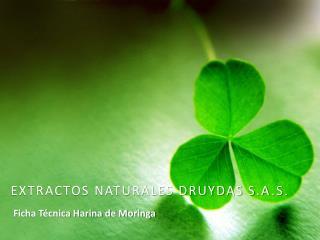 EXTRACTOS NATURALES DRUYDAS S.A . S .