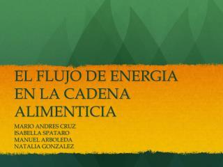 EL FLUJO DE ENERGIA EN LA CADENA ALIMENTICIA