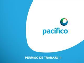 PERMISO DE  TRABAJO_4