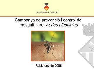 Campanya de prevenció i control del mosquit tigre,  Aedes albopictus Rubí, juny de 2006