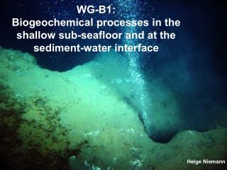 WG-B1: Biogeochemical processes in the shallow sub-seafloor and at the sediment-water interface