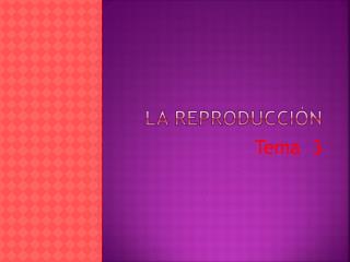 La reproducci�n