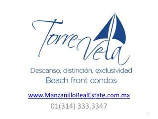 ManzanilloRealEstate.mx 01(314) 333.3347