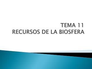 TEMA 11 RECURSOS DE LA BIOSFERA
